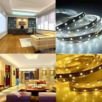 3528 5M 300 LED SMD 12V Flexible Strip Light Tape Roll Cool/Warm White WST