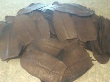 1 Large #1 Quality Tanned Beaver Tail Dyed Walnut Color Leather Wallet Buckskin.