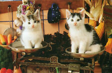 """WEIGHING IN"" 2 Kittens Cats Scale Kitchen Weights BOXLESS Jigsaw Puzzle *100%*"