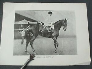 Vintage Print of American Racehorse REGRET, 1912, Notter Up, 1915 Kentucky Derby