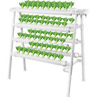 4 Layers Hydroponic 72 Sites Grow Kit Grow System for Leafy Vegetables picture