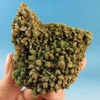 Green Pyromorphite Crystal Specimen-py0546