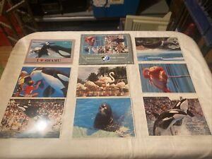 Sea World Vintage Post Card 1989