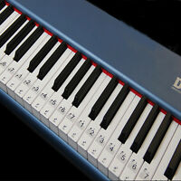 Transparent & Removable Piano Stickers for 54/61/76/88 Key Keyboards Durable QL