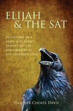 Elijah & the SAT: Reflections on a hairy, old, desert prophet and the benchmarki