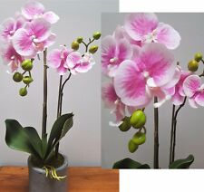 Butterfly Phal orchid plant real touch mauve in pot artificial flower 50cm