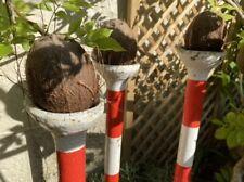 More details for vintage fairground coconut-shy poles