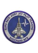 USAF Patch EURO-NATO JOINT JET PILOT TRAINING GRADUATE assigned to F-15Cs