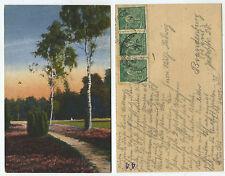 36557 - Birken im Park - Ansichtskarte, Bahnpoststempel Hamburg-Osnabrück