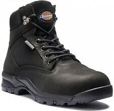 Dickies Corbett Women's Safety Work Boots Black (Size 8)
