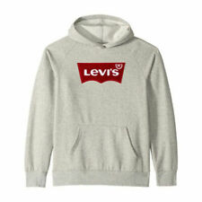 Levi's Youth Boys Logo Sweater Pullover Hoodie gray, Large 10/12