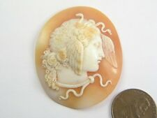 VERY FINE QUALITY ANTIQUE VICTORIAN PERIOD CARVED SHELL MEDUSA SNAKES CAMEO
