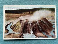 Sponge Geyser, Yellowstone National Park Vintage Postcard