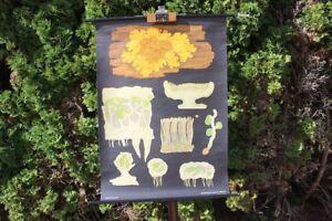 Role Map Schulwandkarte Wall Map Yellow Wandflechte School Map Lehrkarte