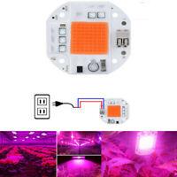 100W Full Spectrum LED COB Chip Grow Light Plant Growing Lamp 70W 50W 110V 220V@