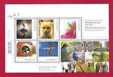 Canada  # 2388 Souvenir Sheet 2010  $ 2.85   WILDLIFE  PHOTOGRAPHY   VF NH  New
