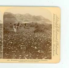 B2181 Jarvis 48 Mountains Of Judea From The Plain Of Jerico Palestine D