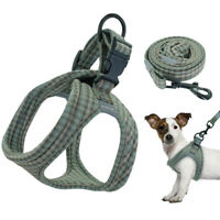 Step In Dog Harness & Leash Cotton Padded Reflective Vest Chihuahua Yorkie Green