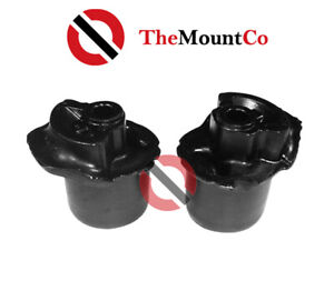 Pair Rear Control Arm Bush Kit Replacement Bushes To Suits Toyota Echo 2000-05