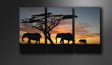 Bilder auf Leinwand Afrika 160cm XXL 1066 neu Alle Wandbilder fertig gerahmt