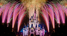 Wall Mural Fantasy Princess Castle Fireworks Repositionable Vinyl Interior Art