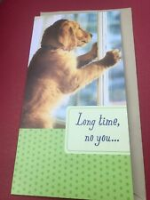 Hallmark Miss You/Thinking Of You Greeting Card Adorable Dog Looking Out Window