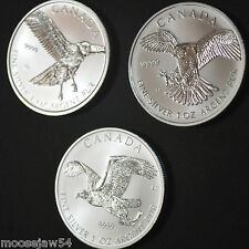 "3 - 1 Oz  Silver  "" Birds Of Prey "" Series  Coins - Falcon - Eagle - Hawk -  RCM"