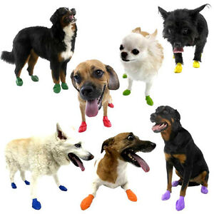 Pawz Dog Boots 12-pack Waterproof Sizes XXS-XS-SM-MD-LG-XL