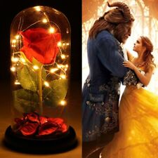 MOTHER'S DAY Beauty And The Beast Eternal Rose LED Light Glass Dome Home Decor