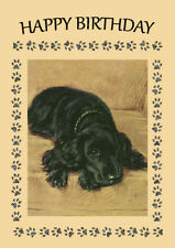 COCKER SPANIEL BLACK DOG ON CHAIR DOG  BIRTHDAY GREETINGS NOTE CARD