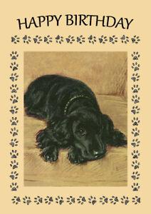 COCKER SPANIEL BLACK DOG ON CHAIR DOG  BIRTHDAY GREETINGS NOTE CARD