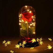 Rose Led Light Beauty & The Beast Rose Kit -String Light Wedding Valentine's Gif