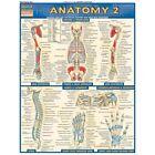 QuickStudy Bar Chart: Anatomy 2