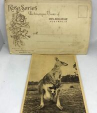 Australia 1930 Rose Series-12 Views Of Melbourne & Australia Kangaroo Postcard