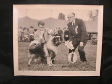 Glossy Press Photo 10/8/1955 Devon PA Dog Show Keeshond Dogs 1st Place Winner