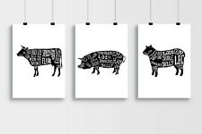 Butchers Lamb Cuts of Meat A3 Laminated Poster