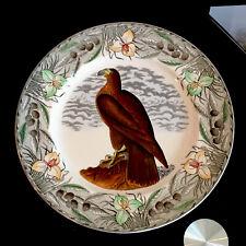 More details for adams birds of america john james audubon hand coloured bird of washington plate