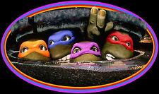 90's Classic Teenage Mutant Ninja Turtles The Guys custom tee Any Size Any Color