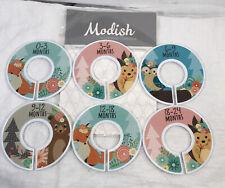 Modish Labels Baby Nursery Closet Dividers, Organizers, Decor, Forrest Creatures