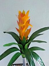 "21"" Guzmania plant. silk flower floral arrangements"