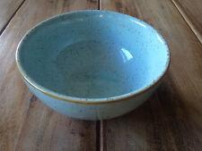 Churchill STONECAST Soup Bowl Schale Bowl Duck Egg Blue Schüssel Porzellan 47 cl
