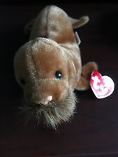 Ty Beanie Babies 1999 Paul Brown Walrus Pe pellets