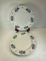 Farberware HYDRANGEA 4299 stoneware Dinner Plates floral set 2