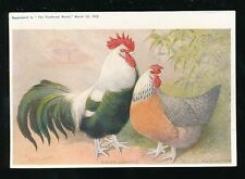 Bird Posted Single Collectable Animal Postcards
