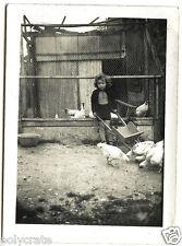 Petite fille avec animaux photos anciennes prisonnier Stalag X c visa 1940