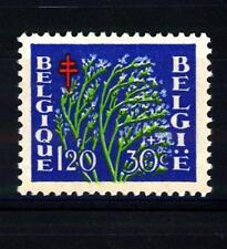 BELGIUM - BELGIO - 1950 - Pro opere antitubercolari. Fiori e sanatori