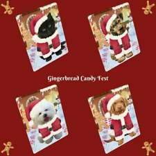 Christmas Gingerbread Candyfest Dog Cat Pet Photo Lovers Small Mini Magnet