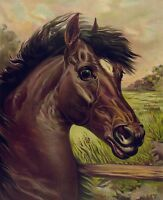 "perfect  24x36 oil painting handpainted on canvas "" horse""841"