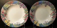 """Nikko Secret Garden Soup Bowls 8 1/8"""" Floral Springtime Set of 2 Excellent"""