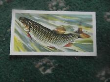 "Brooke Bond ""Freshwater Fish"" 1960 original tea-card,  No.9, ""Chub""."